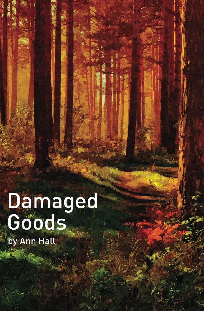 Damaged_Goods_Cover_for_Kindle
